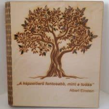Fa termékek